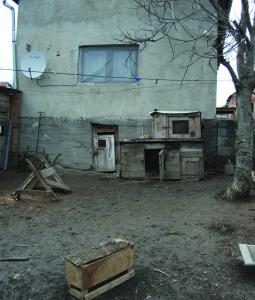 _04-08_hazai_mg